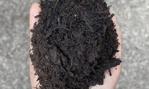 Basic-Soil-Conditioner-562x306_72